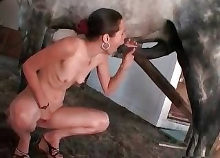 Slender bitch is trying to swallow a horse manstick